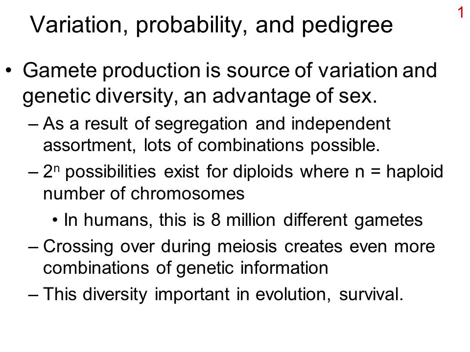 1 Variation, probability, and pedigree Gamete production is source of variation and genetic diversity, an advantage of sex. –As a result of segregatio