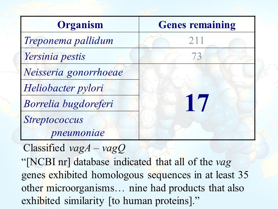 OrganismGenes remaining Treponema pallidum 211 Yersinia pestis 73 Neisseria gonorrhoeae 17 Heliobacter pylori Borrelia bugdoreferi Streptococcus pneum