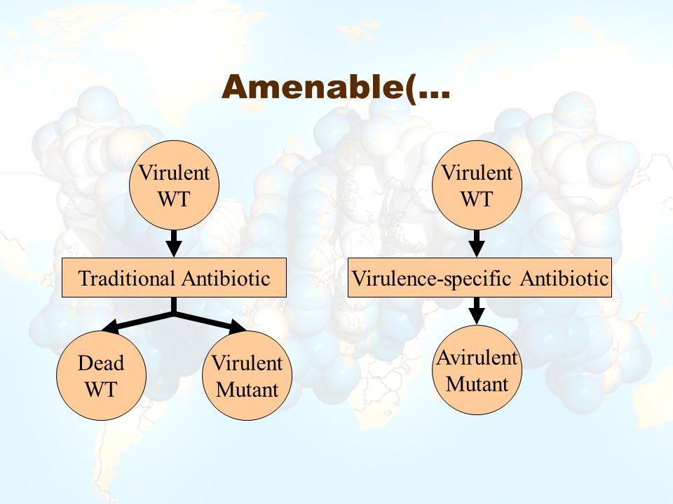 Amenable(… Virulent WT Virulence-specific Antibiotic Avirulent Mutant Virulent WT Dead WT Traditional Antibiotic Virulent Mutant