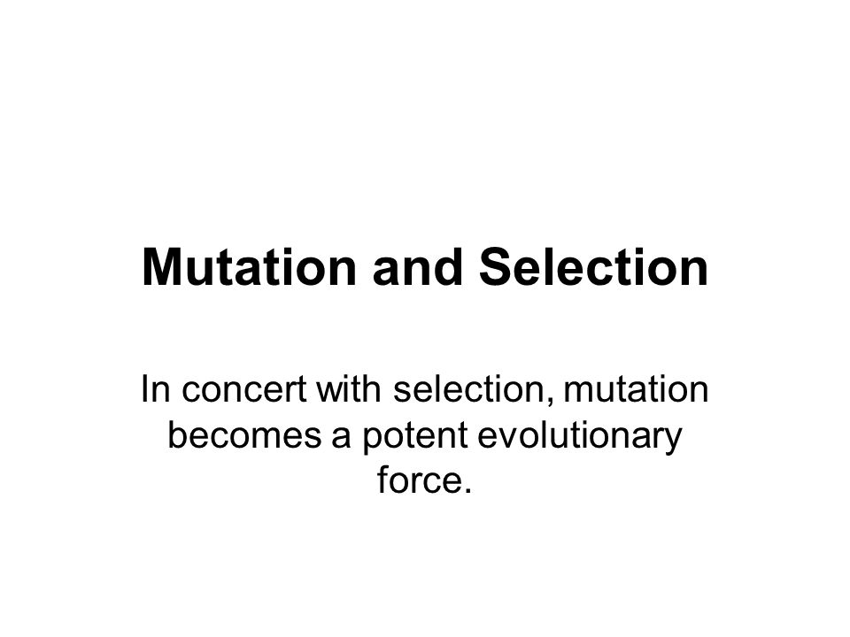 Mutation and Selection In concert with selection, mutation becomes a potent evolutionary force.
