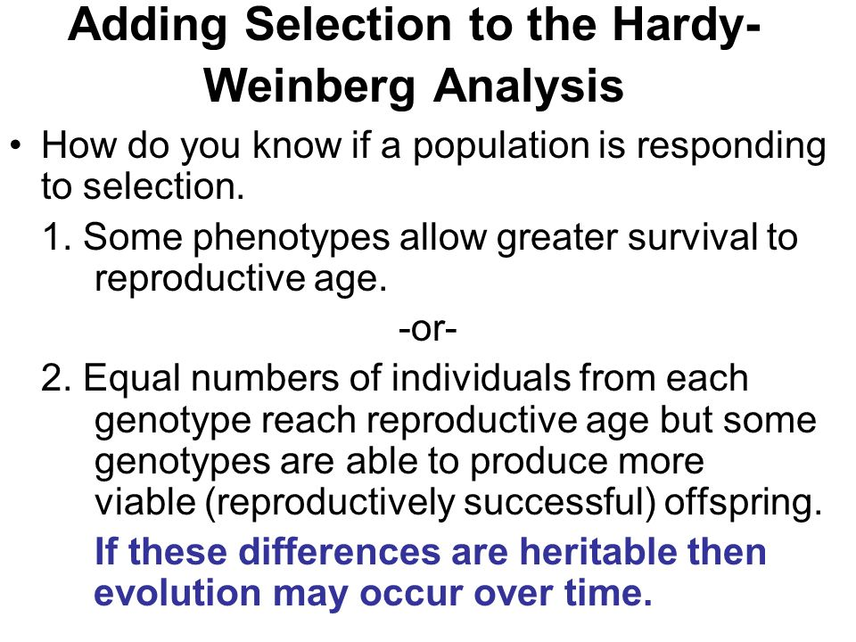 Adding Selection to the Hardy- Weinberg Analysis How do you know if a population is responding to selection. 1. Some phenotypes allow greater survival