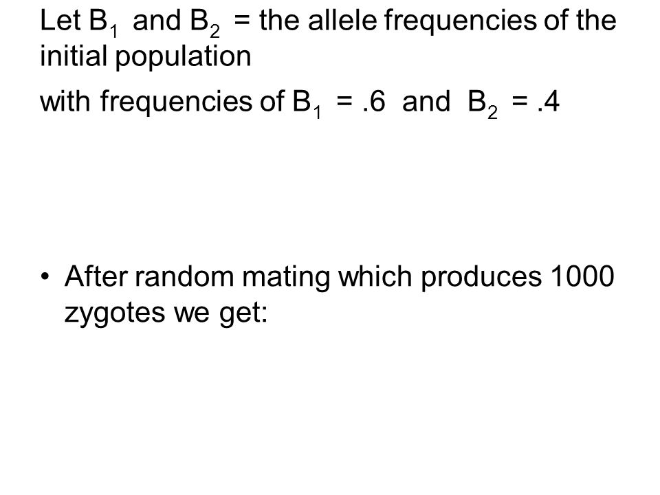 Let B 1 and B 2 = the allele frequencies of the initial population with frequencies of B 1 =.6 and B 2 =.4 After random mating which produces 1000 zyg