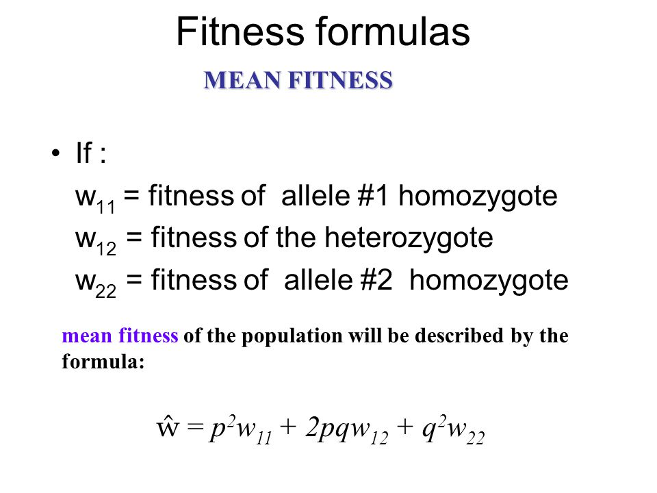 Fitness formulas If : w 11 = fitness of allele #1 homozygote w 12 = fitness of the heterozygote w 22 = fitness of allele #2 homozygote mean fitness of the population will be described by the formula: ŵ = p 2 w 11 + 2pqw 12 + q 2 w 22 MEAN FITNESS