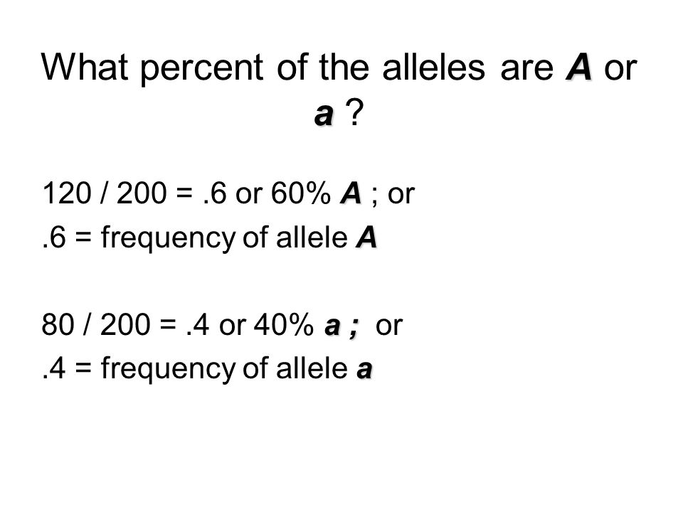 A a What percent of the alleles are A or a ? A 120 / 200 =.6 or 60% A ; or A.6 = frequency of allele A a ; 80 / 200 =.4 or 40% a ; or a.4 = frequency