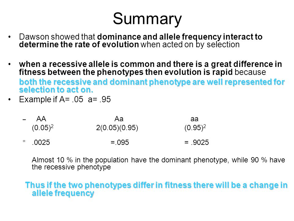Summary Dawson showed that dominance and allele frequency interact to determine the rate of evolution when acted on by selection when a recessive allele is common and there is a great difference in fitness between the phenotypes then evolution is rapid because both the recessive and dominant phenotype are well represented for selection to act on.