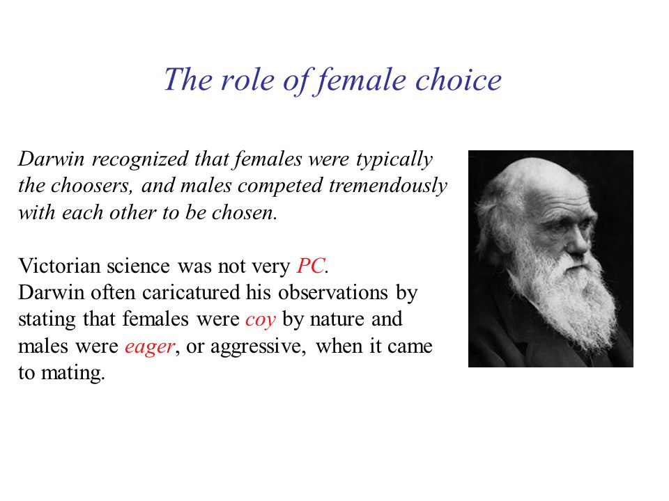 The role of female choice Darwin recognized that females were typically the choosers, and males competed tremendously with each other to be chosen.