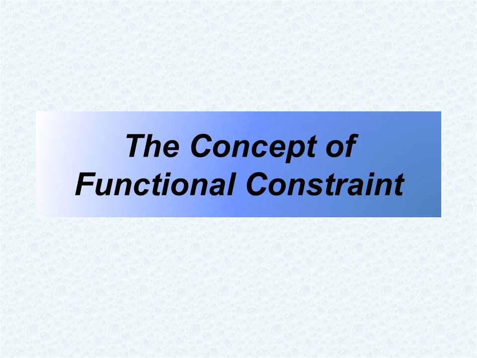 The Concept of Functional Constraint
