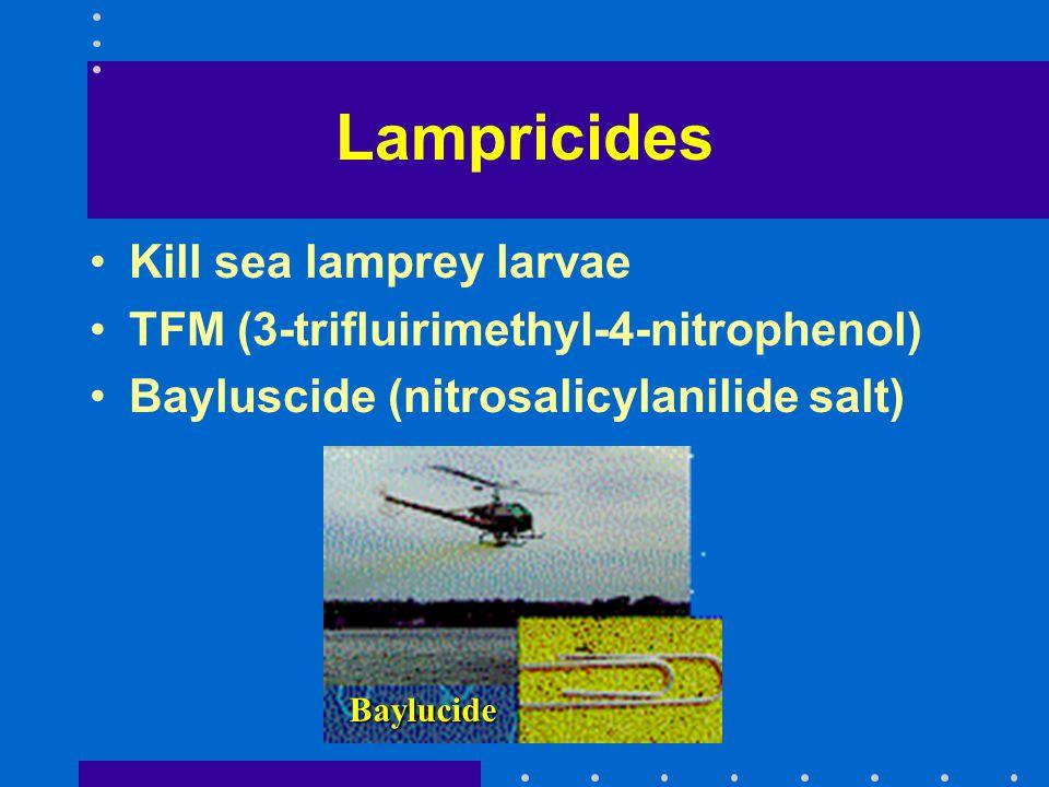 Lampricides Kill sea lamprey larvae TFM (3-trifluirimethyl-4-nitrophenol) Bayluscide (nitrosalicylanilide salt) Baylucide