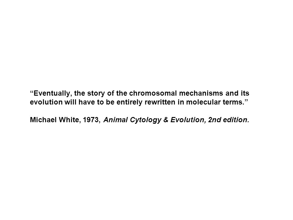 """""""Eventually, the story of the chromosomal mechanisms and its evolution will have to be entirely rewritten in molecular terms."""" Michael White, 1973, An"""