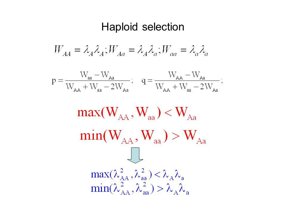 Haploid selection