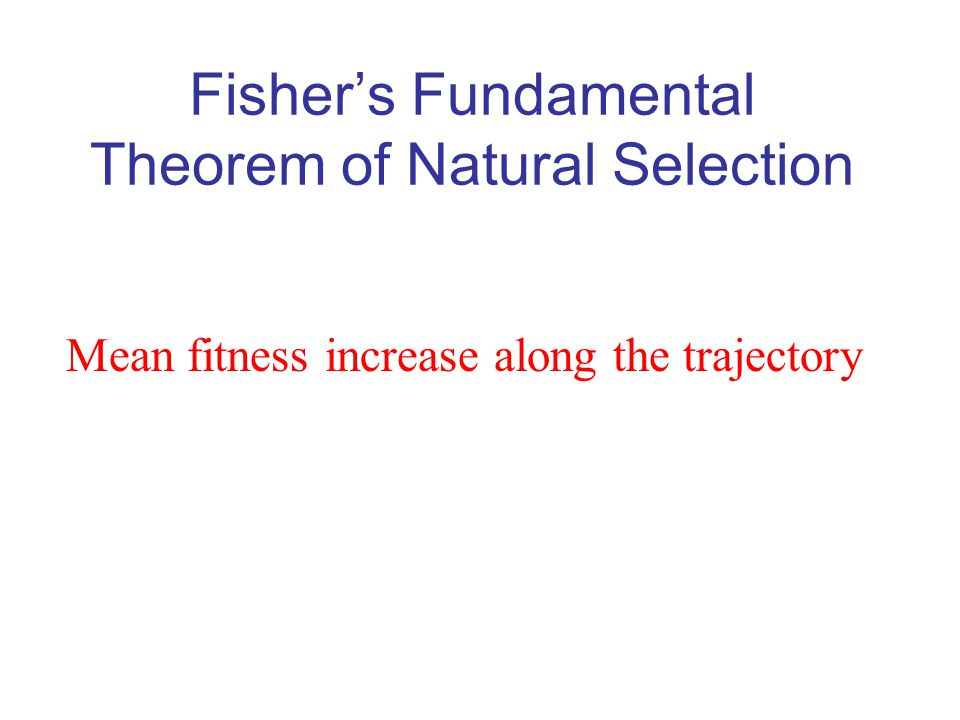 Fisher's Fundamental Theorem of Natural Selection Mean fitness increase along the trajectory
