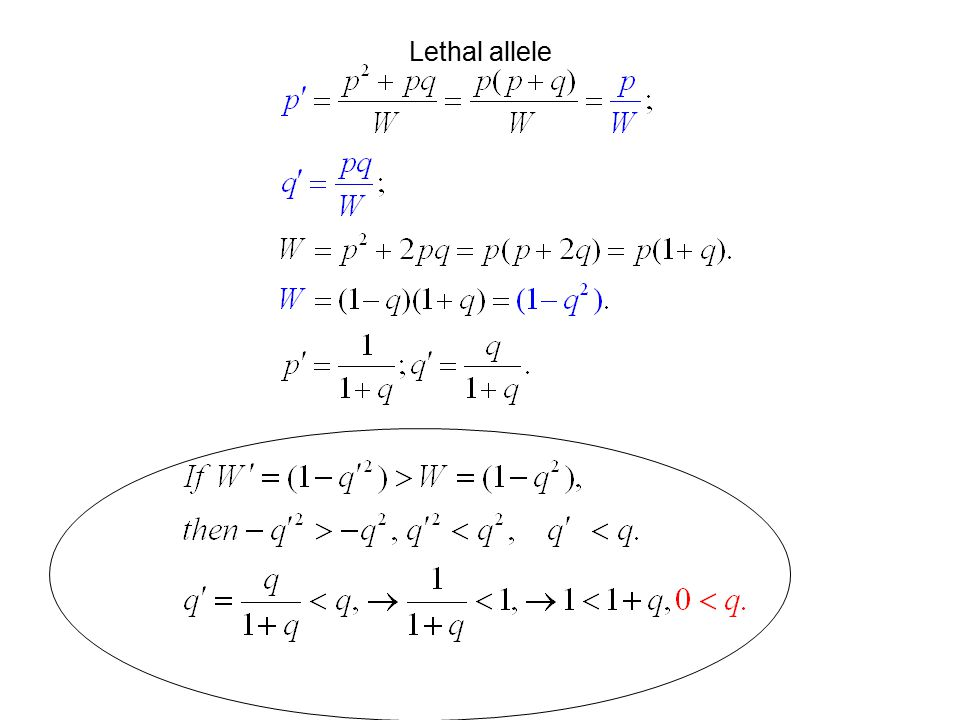 Lethal allele