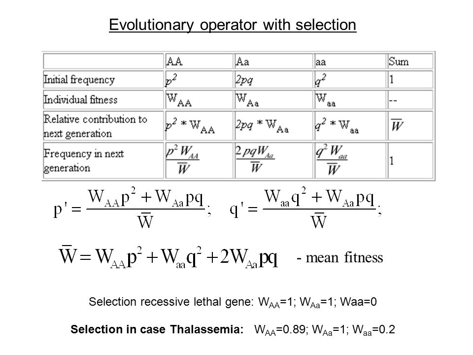 Mean fitness calculation and dynamics