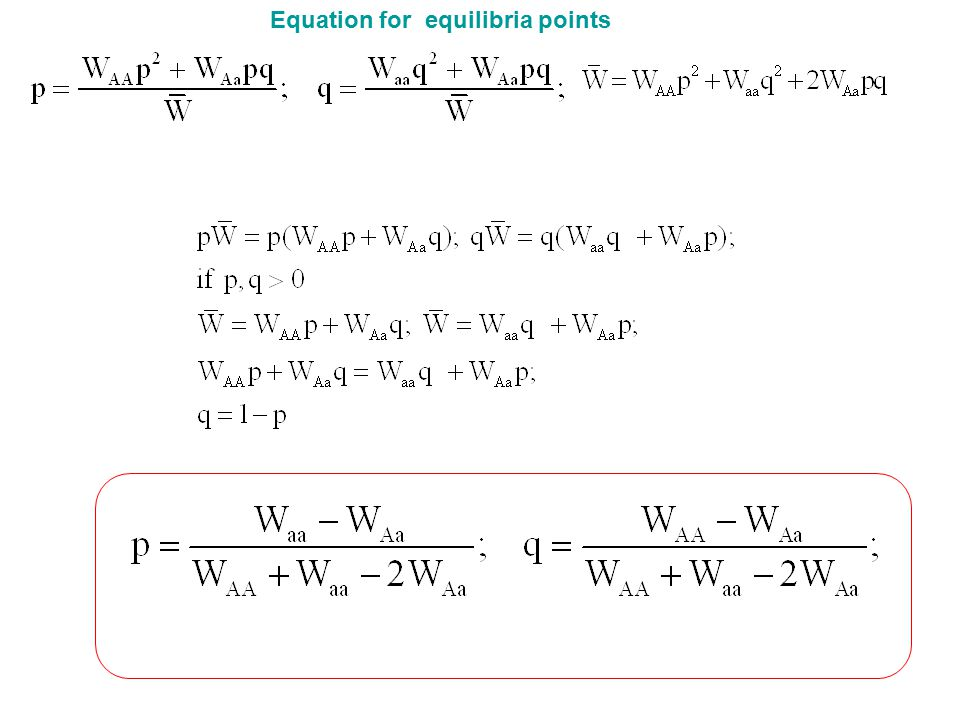 Equation for equilibria points