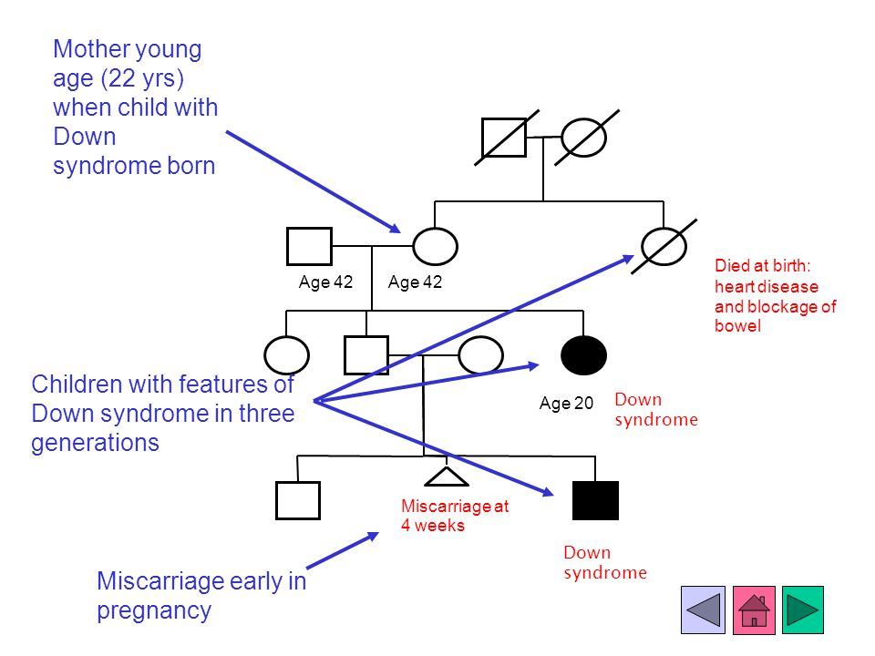 Age 42 Died at birth: heart disease and blockage of bowel Age 20 Miscarriage at 4 weeks Down syndrome Children with features of Down syndrome in three