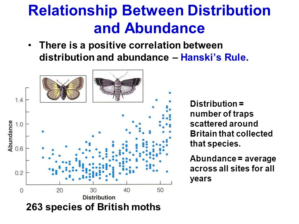 Relationship Between Distribution and Abundance There is a positive correlation between distribution and abundance – Hanski's Rule. 263 species of Bri