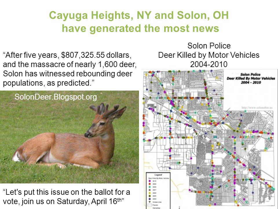 """After five years, $807,325.55 dollars, and the massacre of nearly 1,600 deer, Solon has witnessed rebounding deer populations, as predicted."" SolonDe"