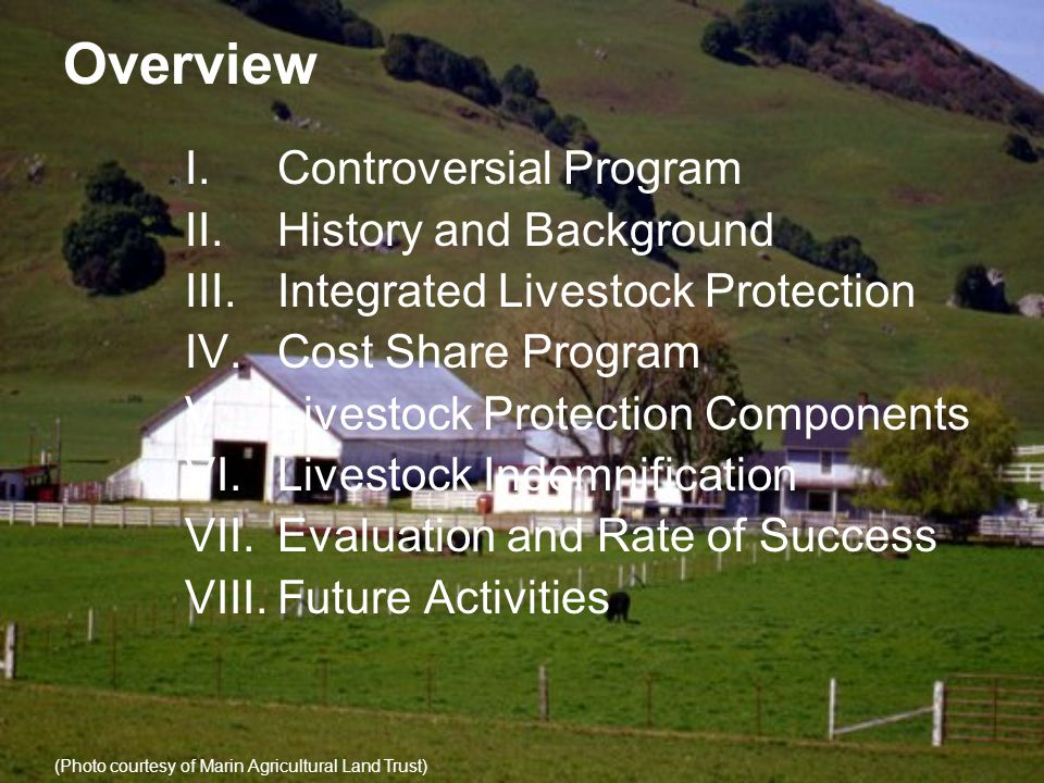 Overview I.Controversial Program II.History and Background III.Integrated Livestock Protection IV.Cost Share Program V.Livestock Protection Components VI.Livestock Indemnification VII.Evaluation and Rate of Success VIII.Future Activities (Photo courtesy of Marin Agricultural Land Trust)