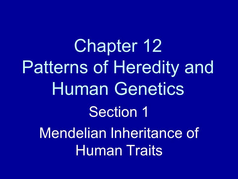 Pedigree A pedigree is a graphic representation of genetic inheritance.