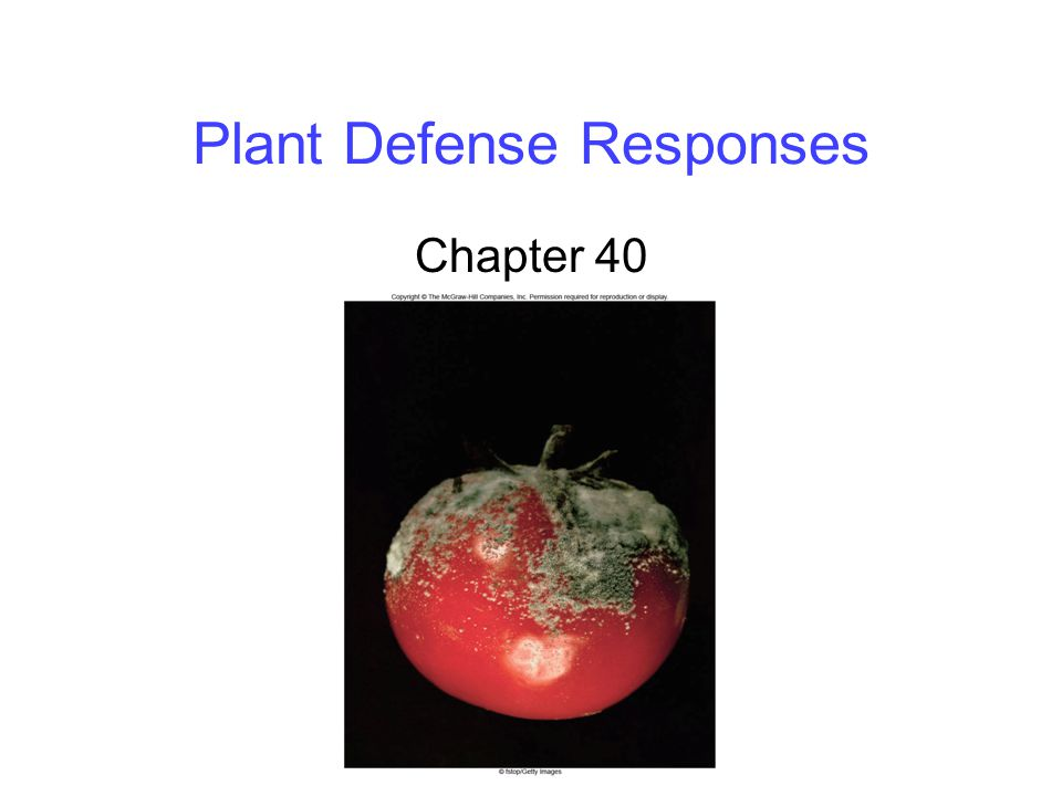 Plant Defense Responses Chapter 40