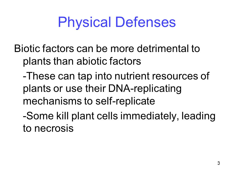 3 Physical Defenses Biotic factors can be more detrimental to plants than abiotic factors -These can tap into nutrient resources of plants or use thei