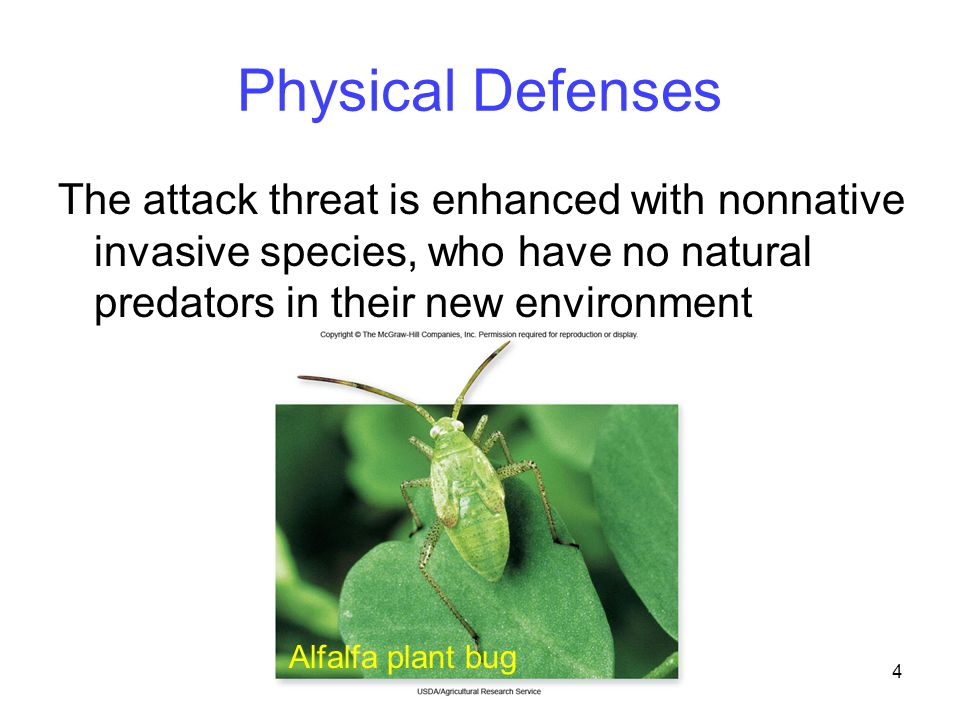 15 Toxin Defenses Plants protect themselves from toxins in two main ways 1.