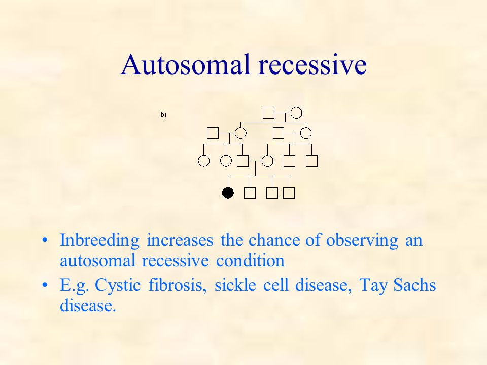 Autosomal recessive Inbreeding increases the chance of observing an autosomal recessive condition E.g.