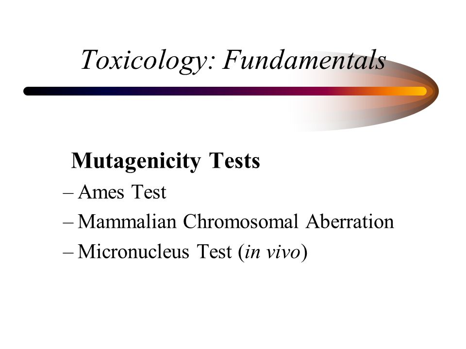 Toxicology: Fundamentals Mutagenicity Tests –Ames Test –Mammalian Chromosomal Aberration –Micronucleus Test (in vivo)