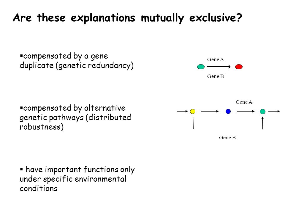  compensated by a gene duplicate (genetic redundancy)  compensated by alternative genetic pathways (distributed robustness)  have important functions only under specific environmental conditions Are these explanations mutually exclusive.