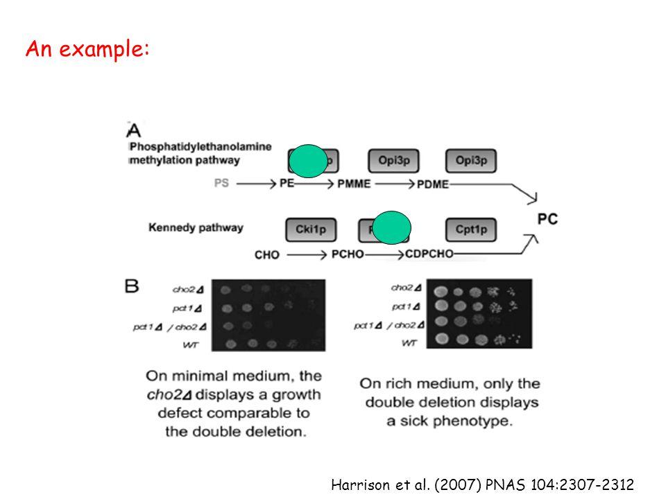 Harrison et al. (2007) PNAS 104:2307-2312 An example: