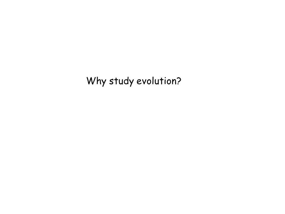 Why study evolution