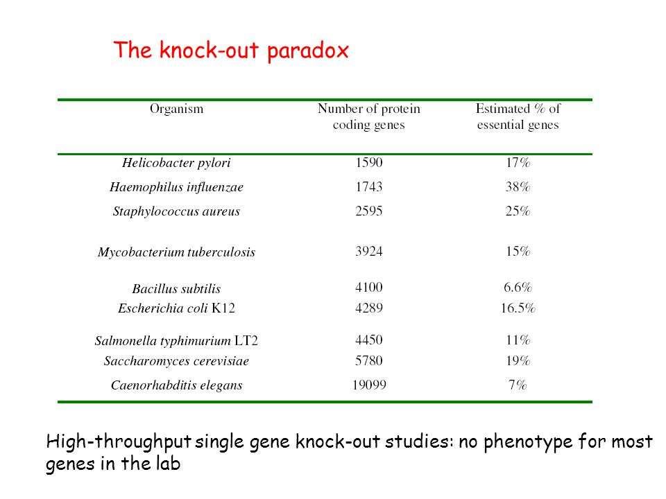 The knock-out paradox High-throughput single gene knock-out studies: no phenotype for most genes in the lab