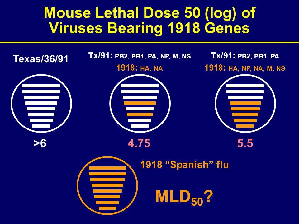 Texas/36/91 >6 Tx/91: PB2, PB1, PA, NP, M, NS 1918: HA, NA 4.75 Tx/91: PB2, PB1, PA 1918: HA, NP, NA, M, NS 5.5 1918 Spanish flu MLD 50 .
