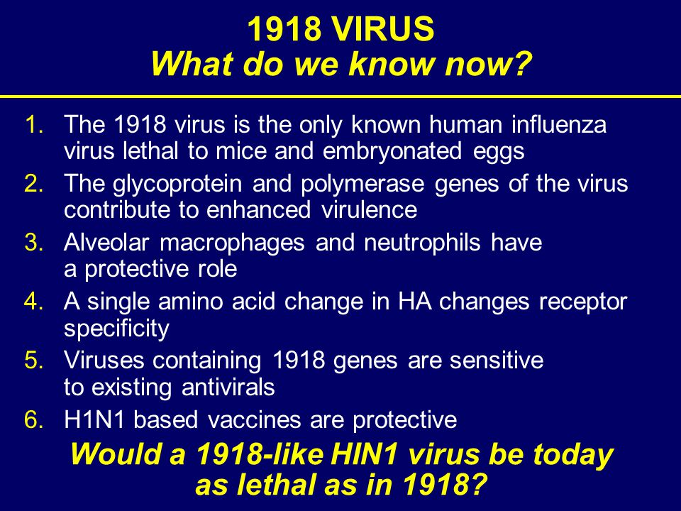 1.The 1918 virus is the only known human influenza virus lethal to mice and embryonated eggs 2.The glycoprotein and polymerase genes of the virus contribute to enhanced virulence 3.Alveolar macrophages and neutrophils have a protective role 4.A single amino acid change in HA changes receptor specificity 5.Viruses containing 1918 genes are sensitive to existing antivirals 6.H1N1 based vaccines are protective 1918 VIRUS What do we know now.