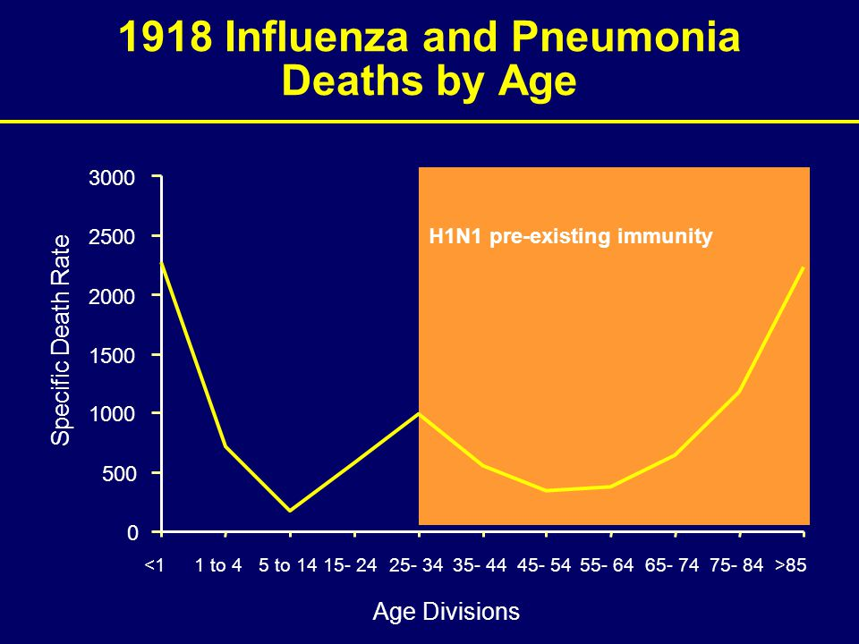 H1N1 pre-existing immunity 1918 Influenza and Pneumonia Deaths by Age <11 to 45 to 1415- 2425- 3435- 4445- 5455- 6465- 7475- 84>85 Age Divisions Specific Death Rate 0 500 1000 1500 2000 2500 3000
