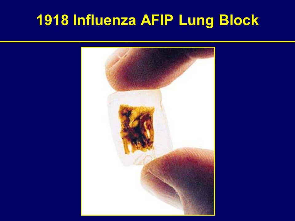 1918 Influenza AFIP Lung Block