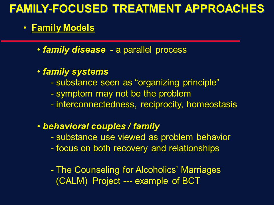  Background & Introduction  Substance-Focused Methods  Relationship-Focused Methods  Relapse Prevention Behavioral Couples Therapy for Alcoholism and Drug Abuse