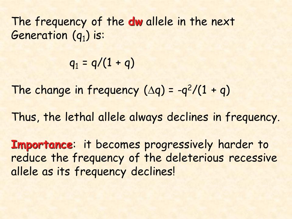 dw The frequency of the dw allele in the next Generation (q 1 ) is: q 1 = q/(1 + q) The change in frequency (  q) = -q 2 /(1 + q) Thus, the lethal al