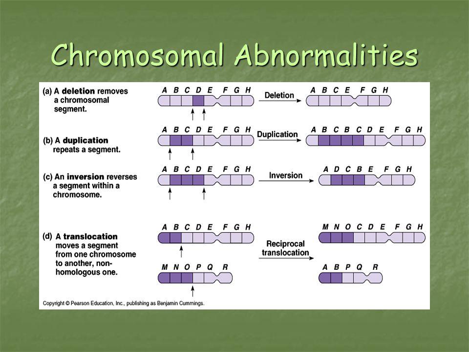 Chromosomal Abnormalities
