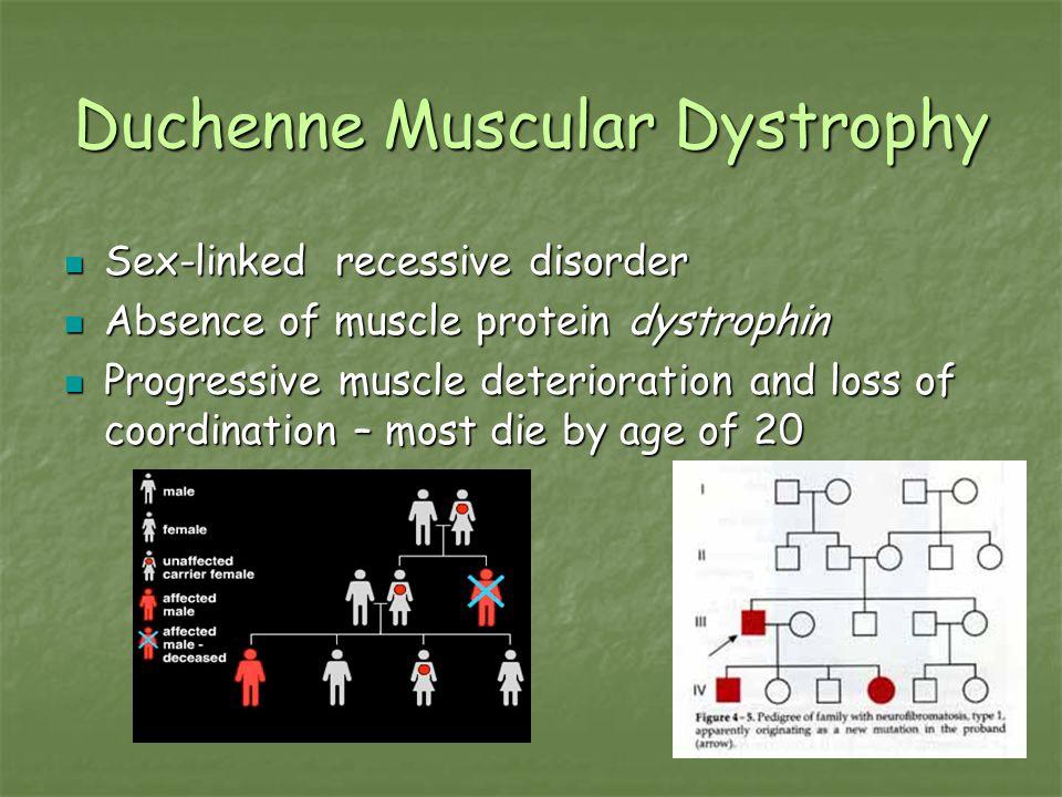 Duchenne Muscular Dystrophy Sex-linked recessive disorder Sex-linked recessive disorder Absence of muscle protein dystrophin Absence of muscle protein