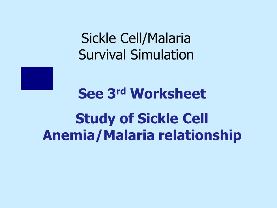 Sickle Cell/Malaria Survival Simulation See 3 rd Worksheet Study of Sickle Cell Anemia/Malaria relationship