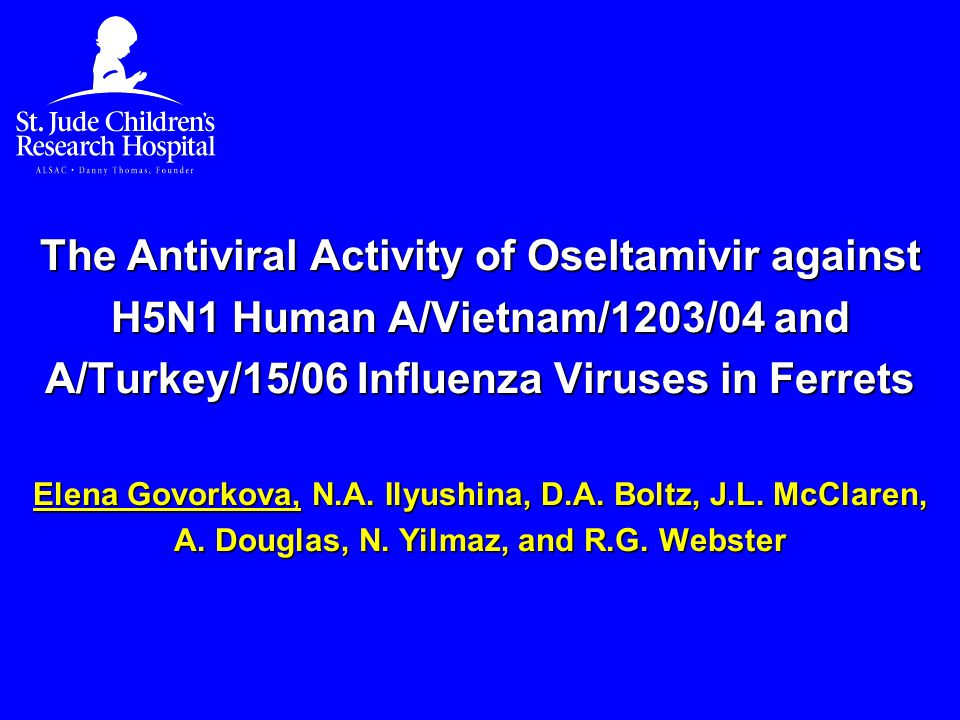 The Antiviral Activity of Oseltamivir against H5N1 Human A/Vietnam/1203/04 and A/Turkey/15/06 Influenza Viruses in Ferrets Elena Govorkova, N.A.