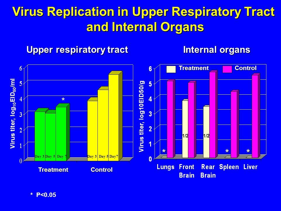 Virus titer, log 10 EID 50 /ml Day 3 Day 5 Day 7 Virus Replication in Upper Respiratory Tract and Internal Organs and Internal Organs Treatment Control Virus titer, log10EID50/g Upper respiratory tract Internal organs 1/2 ControlTreatment * * P<0.05 ***