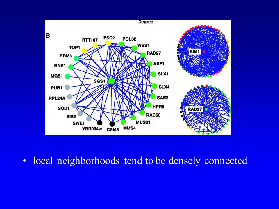 local neighborhoods tend to be densely connected