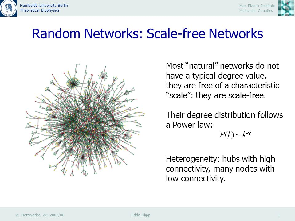 VL Netzwerke, WS 2007/08 Edda Klipp 3 Max Planck Institute Molecular Genetics Humboldt University Berlin Theoretical Biophysics Random Networks: Scale-free Networks The probability that a node is highly connected is statistically more significant than in a random graph, the network's properties often being determined by a relatively small number of highly connected nodes that are known as hubs.