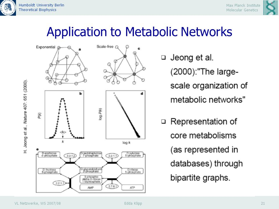 VL Netzwerke, WS 2007/08 Edda Klipp 21 Max Planck Institute Molecular Genetics Humboldt University Berlin Theoretical Biophysics Application to Metabolic Networks Jeong H et al, 2000, Nature