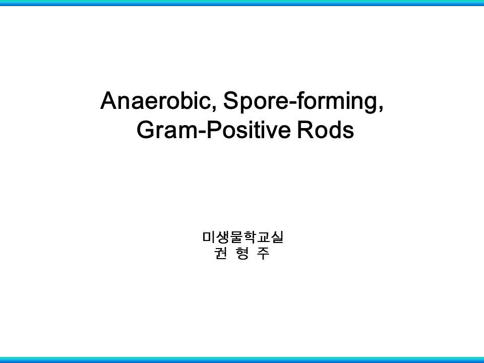 Anaerobic, Spore-forming, Gram-Positive Rods 미생물학교실 권 형 주
