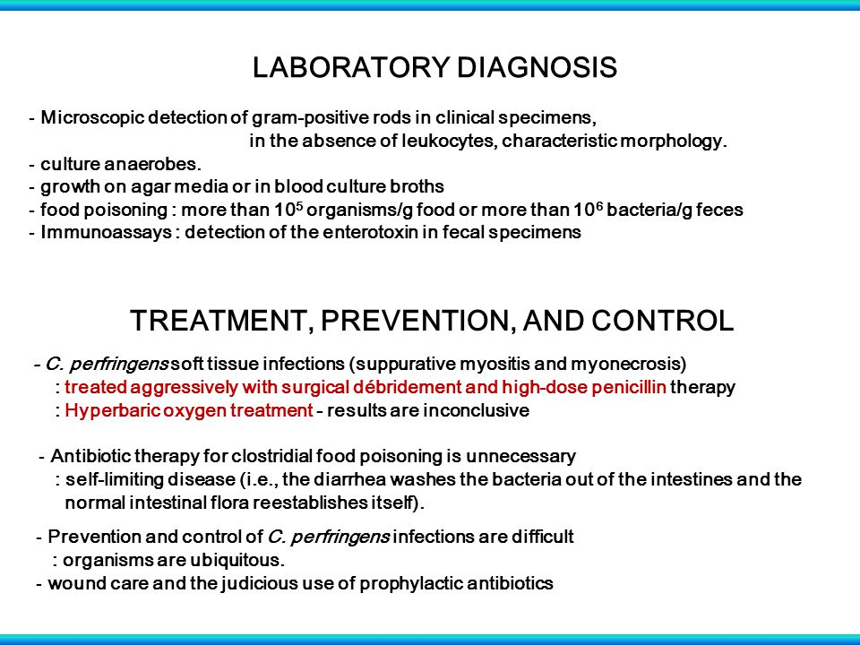 LABORATORY DIAGNOSIS - Microscopic detection of gram-positive rods in clinical specimens, in the absence of leukocytes, characteristic morphology. - c