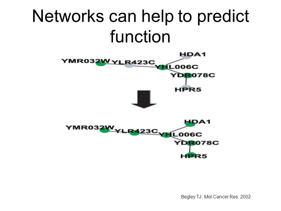 Networks can help to predict function Begley TJ, Mol Cancer Res. 2002.