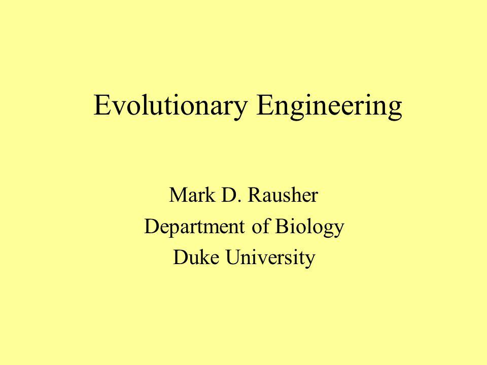 Evolutionary Engineering Mark D. Rausher Department of Biology Duke University